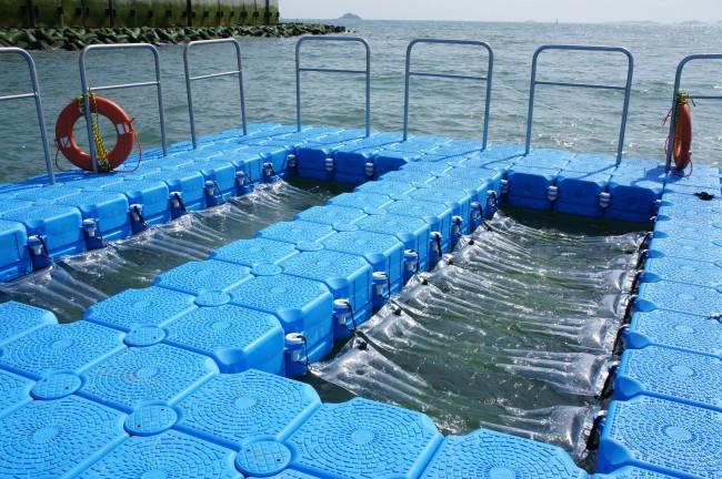 해양바이오에너지 생산기술개발연구센터에서는 서해 영흥도 화력발전소가 있는 바닷가에 해양실증배양장을 설치해 해양 미세조류를 키우고 있다. - 해양바이오에너지 생산기술개발연구센터 제공